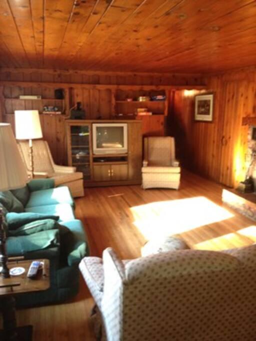 Larger Living Room