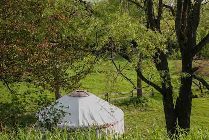 NEW!! The Garden Yurt