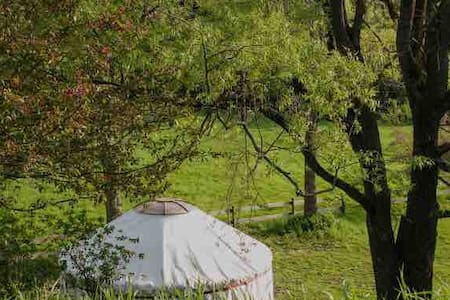 Cozy Heated Yurt with farmhouse access.