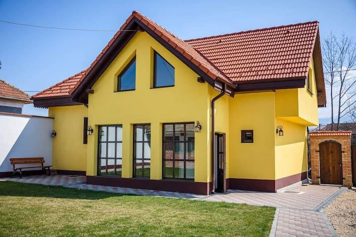 Vila Conacul lui Radu Dragus