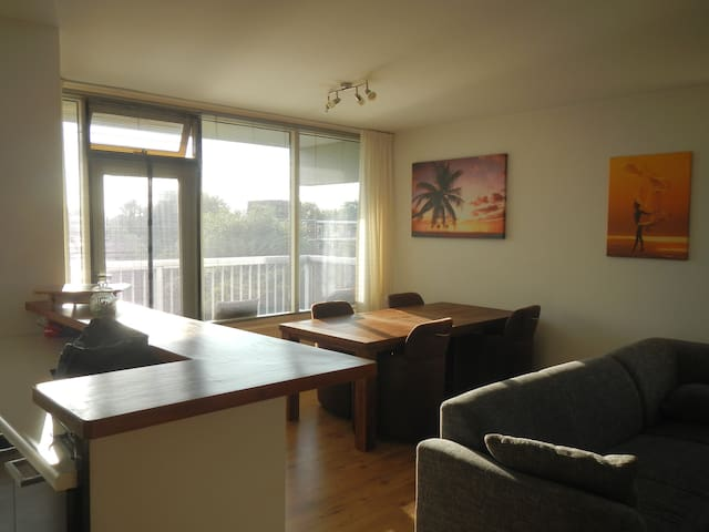 Nice apartment with 2 bicycles - Den Haag - 아파트