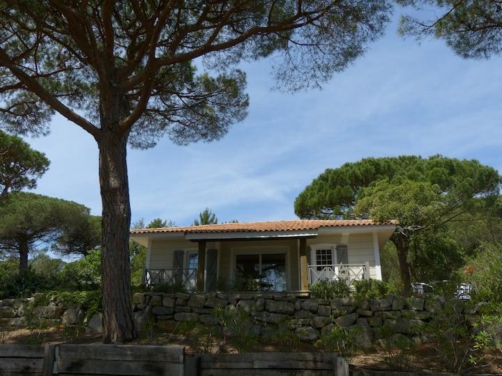 Maison en bois avec jardin de 400m²