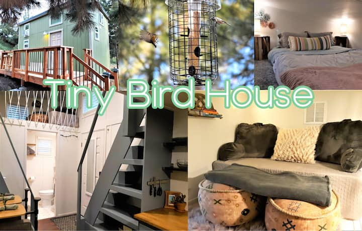 Forested Artistic Cozy Tiny House w/ Wildlife