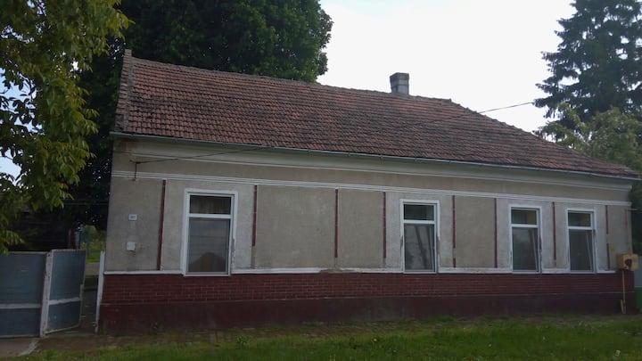A Nice house near Timișoara .Rustic