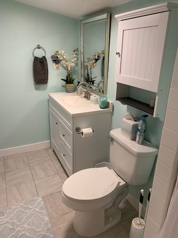Private room and bath close to Texas State
