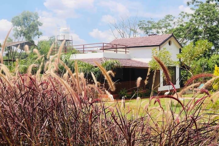 1000 SILVERS - FARM HOUSE STAY
