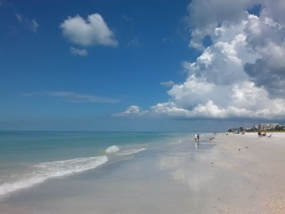 Condos For Rent In Indian Shores Beach Florida