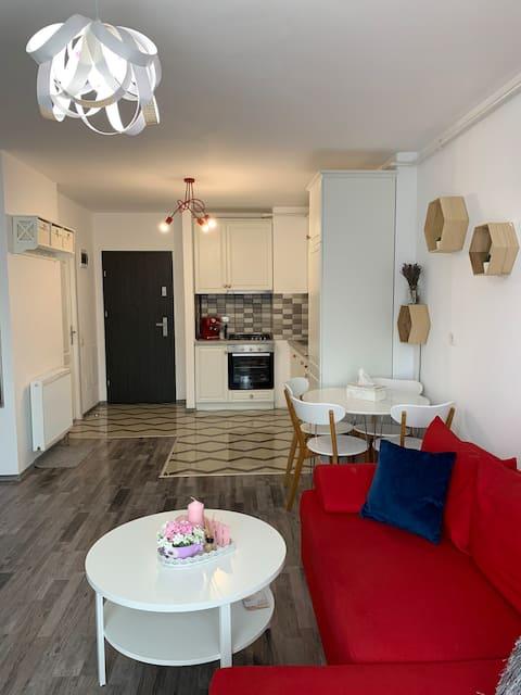 2 Chic & Modern Apartment near Iulius Mall