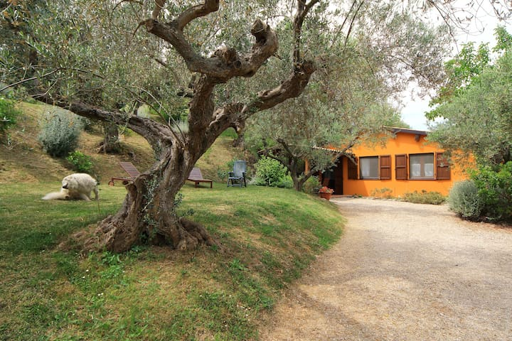 Casa Fonte Pecorale la Stalla - Muraglie - Haus