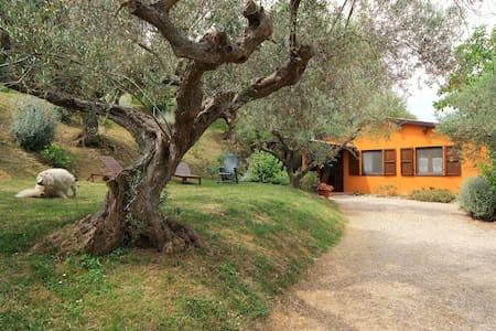 casa Fonte Pecorale - Muraglie