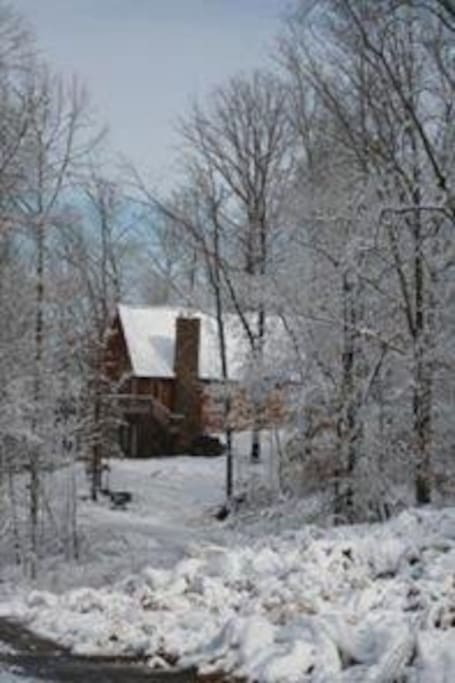 snowy cabin in the woods!