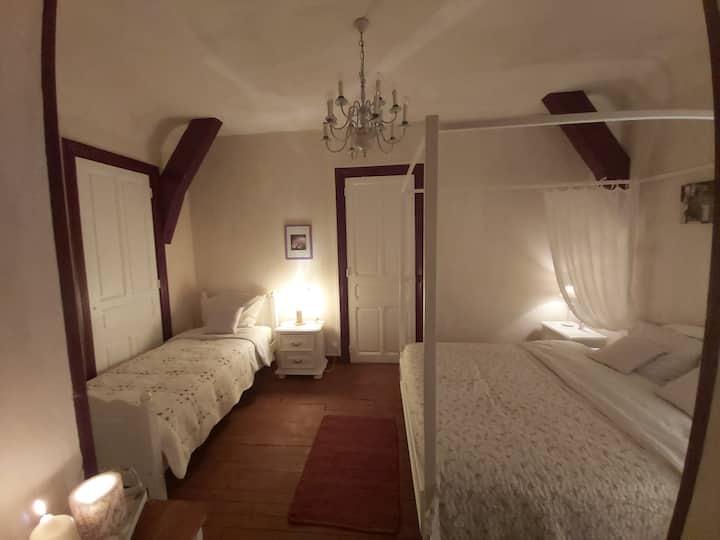 Appartement exceptionnel 5prs Puy-en-velay   5 prs