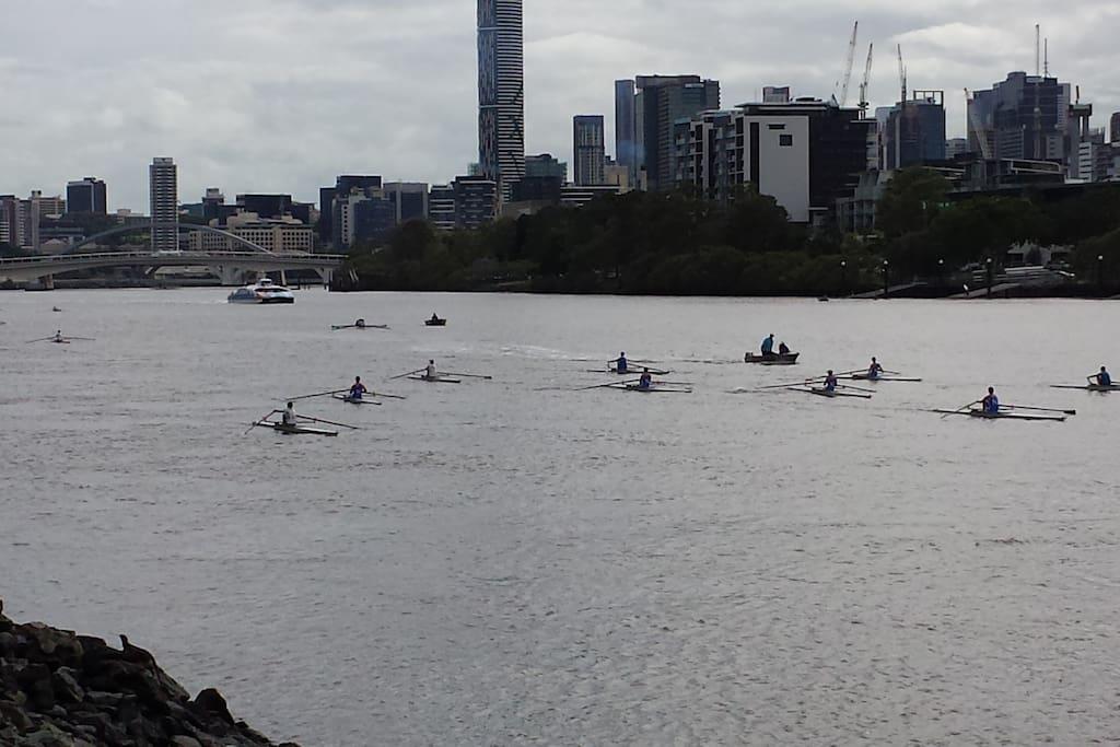 Brisbane River rowers