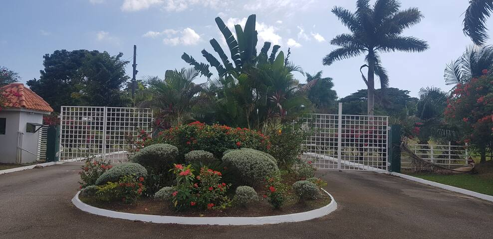 Negril Estate apartments, gated community.