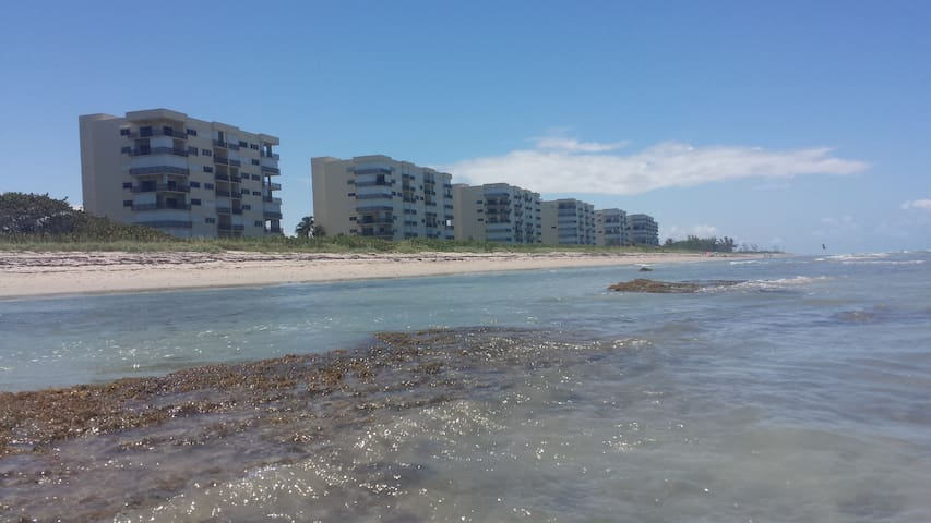 Treasure Coast paradise on the beach