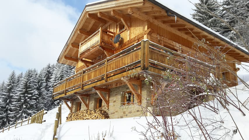 Chalet grand luxe 14 pers. proche Bisanne 1500