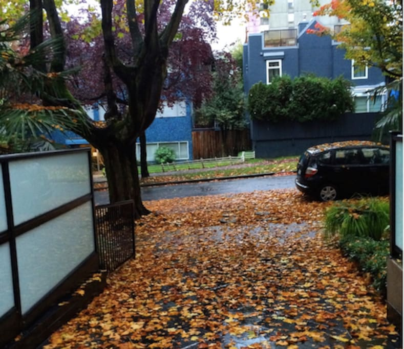The entrance into my building in fall.