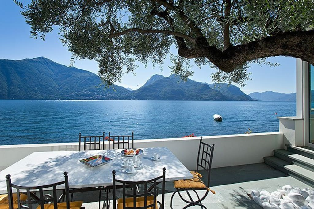 the lake front terrace and olive tree