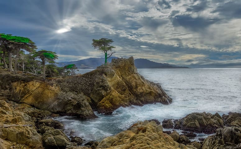The Lone Cypress, which is in Pebble Beach. A friend of mine, a photographer took this picture. Pebble Beach is 10 minutes away Monterey Wharf and Aquarium 7 minutes away, Pacific Grove 10 minutes away and the Big Sur begins 15 minutes from my home.