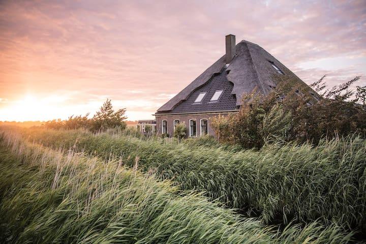 BB de Geheime Tuin, gelegen aan de kust. Vlinder