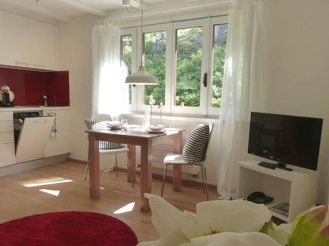 Sport und Erholung in modernem Ambiente - Silvaplana - Appartement