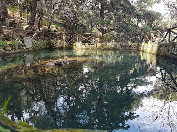 beatifull lake