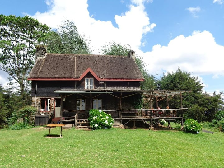 Casle Forest Lodge