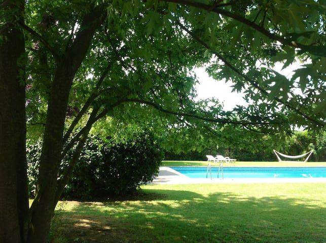 """""""LORD Dino II """"Tennis & Pool"""