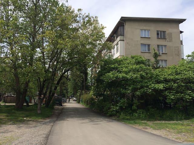 Apart Pitsunda - Bichvinta - Apartment