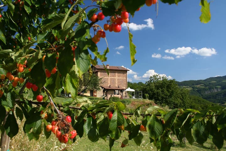 B&B Al Merlo Angelico - Varano de' Melegari - Bed & Breakfast