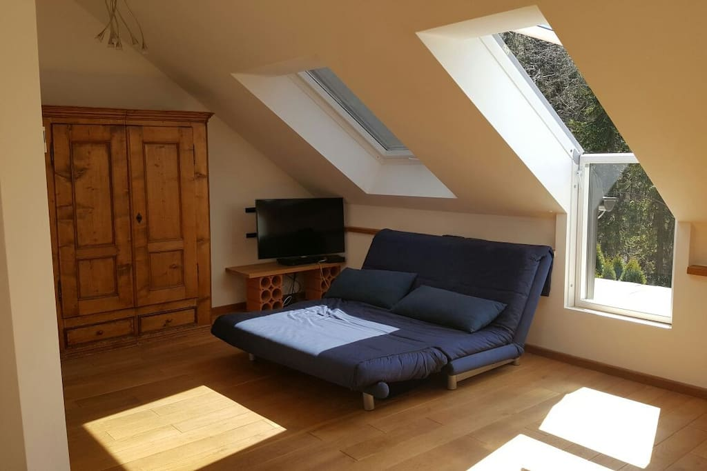 Ligne Roset Schlafsofa im Wohnzimmer - Ligne Roset sleeping sofa in the living room