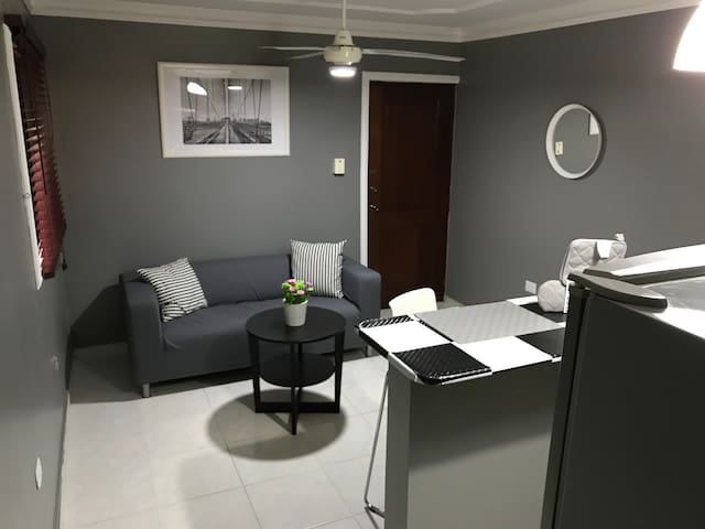 Beautiful Furnished One-Bedroom Apartment
