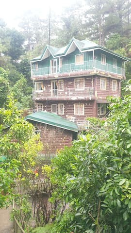 Tree House Transient | FREE Wifi as low as Php250