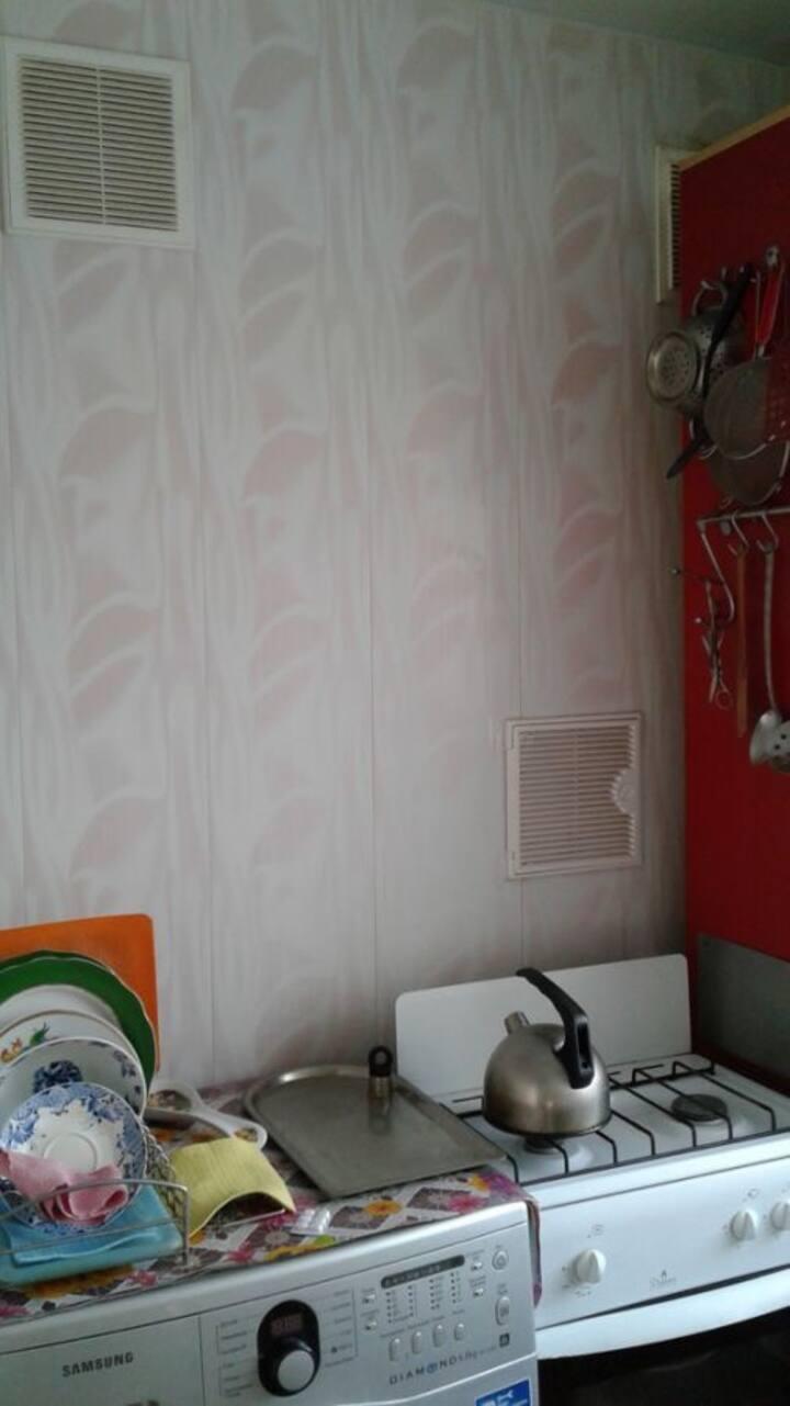 Квартира с прекрасным видом  на Говорова