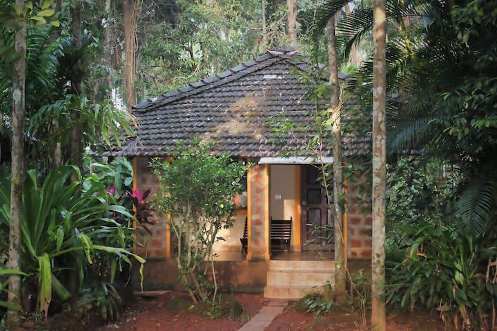 Dudhsagar Plantation Eco Homestay with pool - Dharbhandora - Bungalow