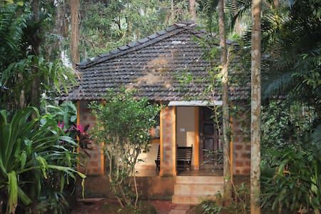 Dudhsagar Plantation Eco Homestay with pool - Dharbhandora - Bungalov