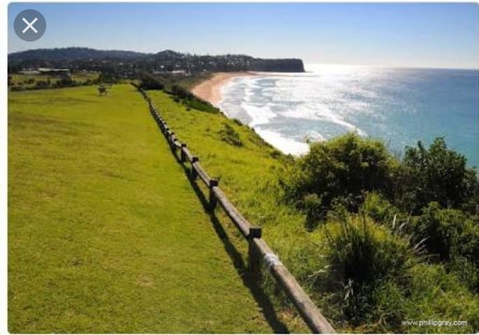 Heidi's Beach House - Mona Vale - House