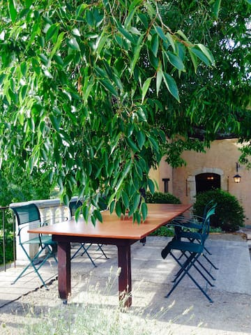 Table under a micocoulier tree