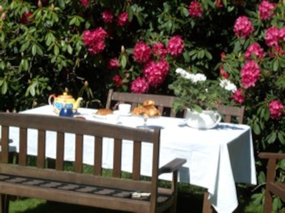 Tea and cake in the garden