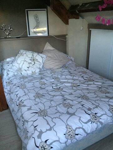 Chambre spacieuse dans quartier résidentiel - Pau - House