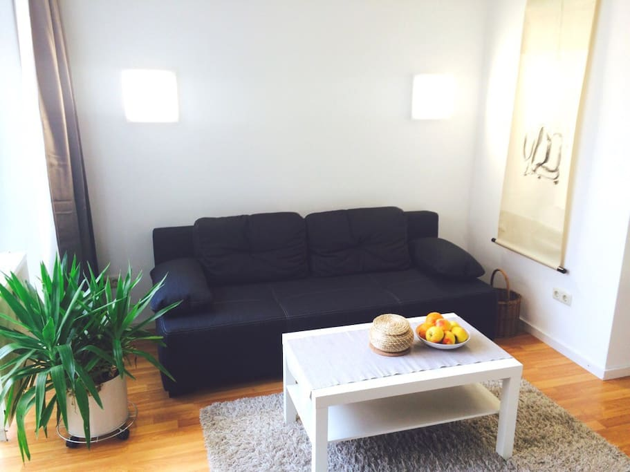 living area with sofa-bed
