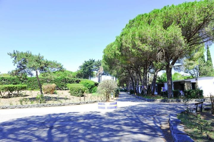 4 star holiday home in Cellole