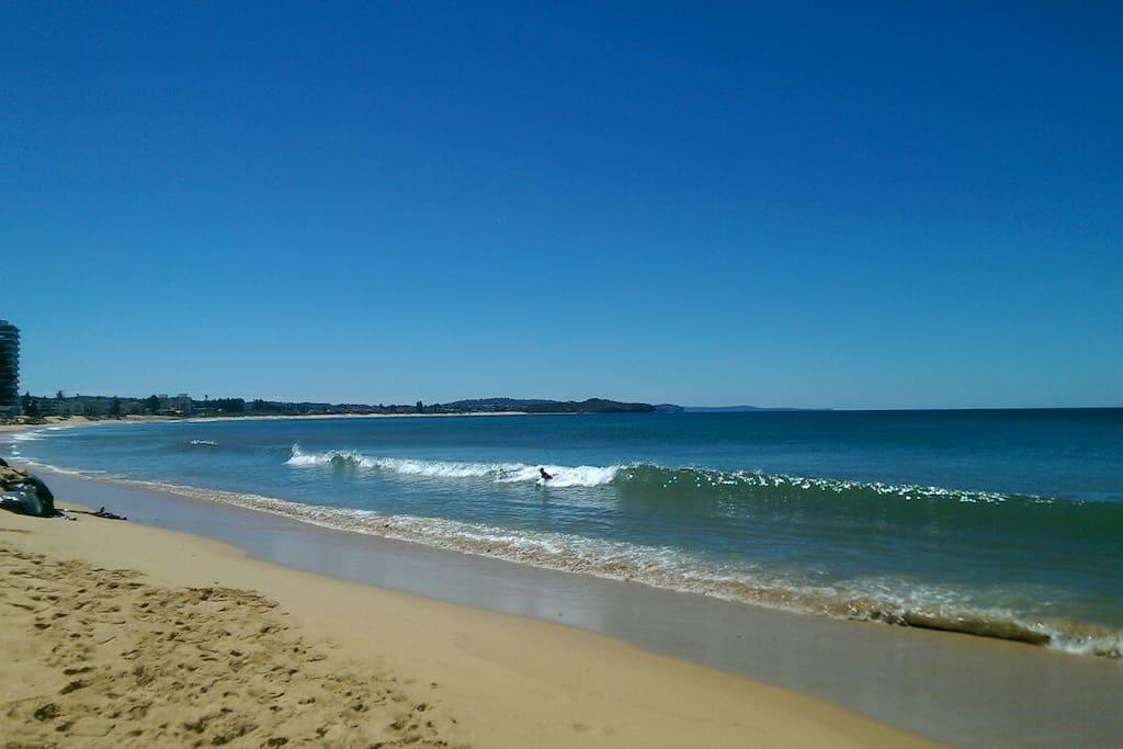 Beautiful Collaroy beach 2 minute walk