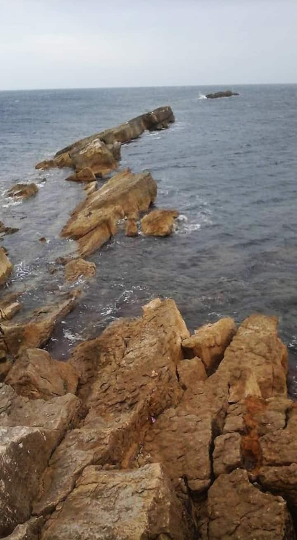 Affioramento roccioso Ligny0101