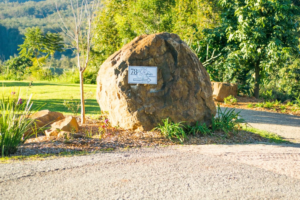 This impressive boulder sits at the entrance to Figtrees on Watson.