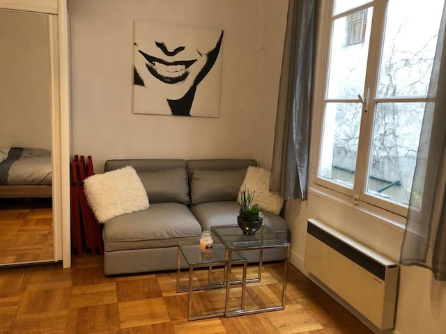 Charming appartment in the heart of Paris