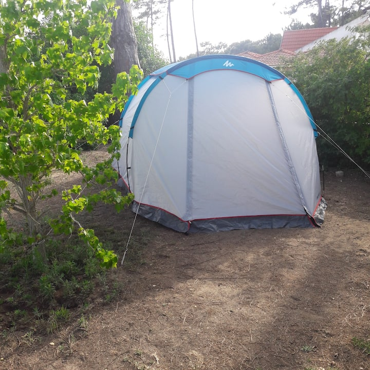 Sintra camping tent in farm 2 to 4 guests (Tent7)
