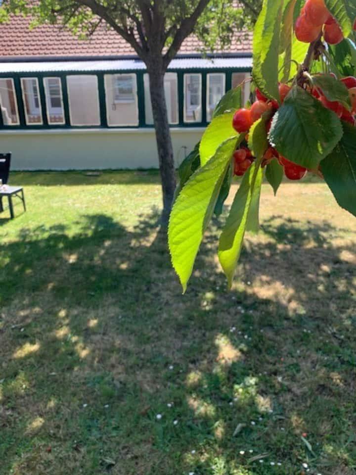 Chambre & beau jardin