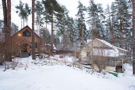 Уютный коттедж недалеко от города - Toksovo