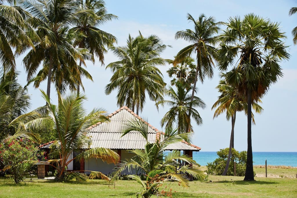 108 Palms Beach Resort Bungalow Front Beach View (2-4-6 pax)